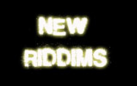 new riddims mini ban
