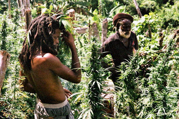Sunday Flicks: Jamaican Documentary Man Free On BluRay & DVD