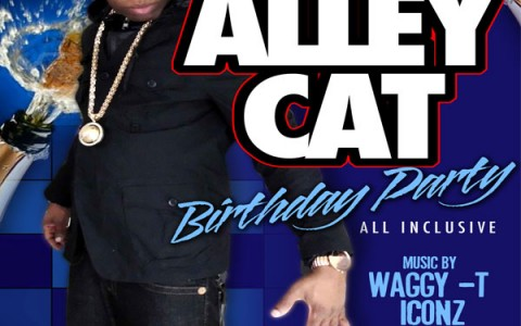 Alley Cat Bday Bash Dec 23 Club Euro