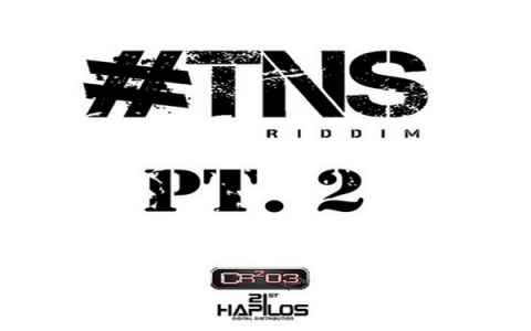 TNS RIDDIM PT2 ZJChrome CR203 RECORDS