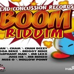 BOOM RIDDIM HEAD CONCUSSION RECORDS APRIL 2013