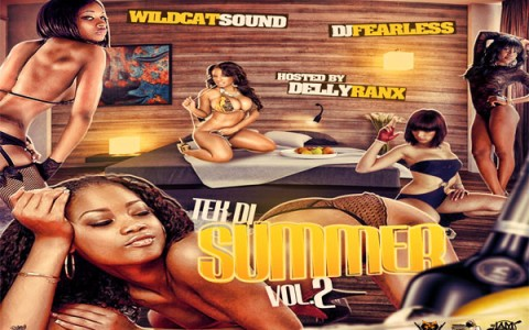 Download Wildcat Sound & DJFear Less Tek Di-Summer Vol 2 mixtape july 2013