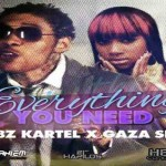 New Vybz Kartel ft Gaza Slim everything you need nov 2012
