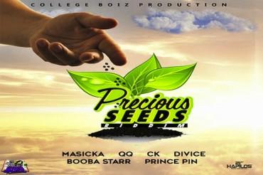 <strong>Stream Precious Seeds Riddim Mix Jamaican Dancehall Music</strong>