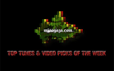 TOP REGGAE DANCEHALL PICKS
