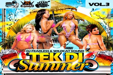 <strong>Download DJ Fearless &#038; Wildcat Sound &#8211; Take The Summer Vol 3 &#8211; Dancehall Mixtape</strong>