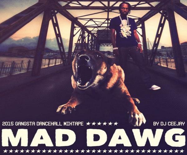 download-dj ceejay-mawd dog-2015 gangsta dancehall mixtape