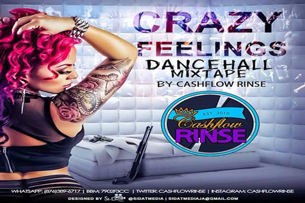 "STREAM OR DOWNLOAD  DJ CASHFLOW RINSE ""CRAZY FEELINGS DANCEHALL MIXTAPE"" – OCT 2014"