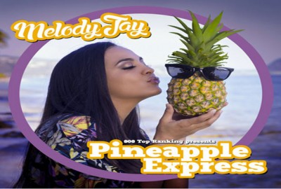 <strong>Pineapple Express Hawaiian Reggae Mixtape &#8211; Melodi Jay -Summer 2015</strong>
