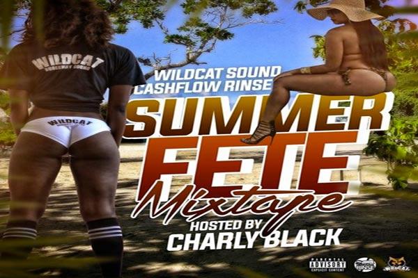 wild cat sound cash flow rinse summer fete dancehall mix 2017